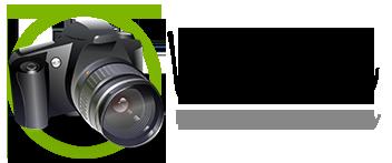 Lens iView header image